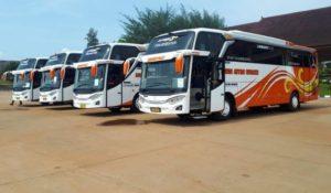 macam-macam bus pariwiwisata menurut ukuran
