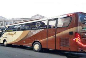 sewa bus pariwisata 60 seat