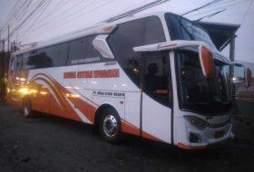 bus hdd