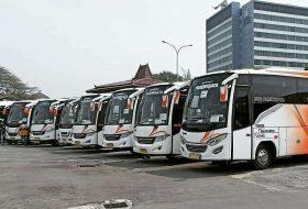 ukuran bus medium